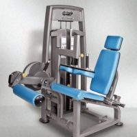 Seated Leg Curl Commercial Gym Equipment
